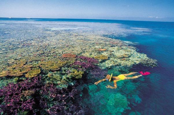 mergulho-whitsundays.jpg
