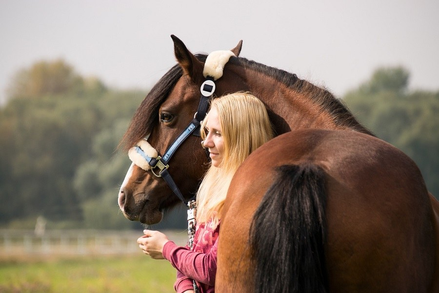 mulher-cavalo-pixabay